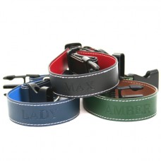 Small-Medium Dog Collar