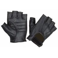 Gloves (8102.00)